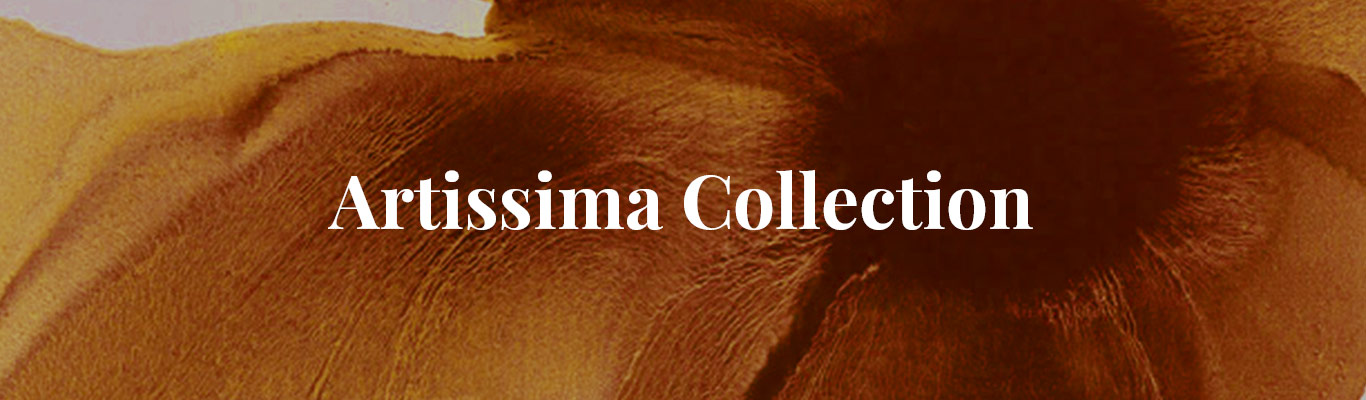 Artissima collection